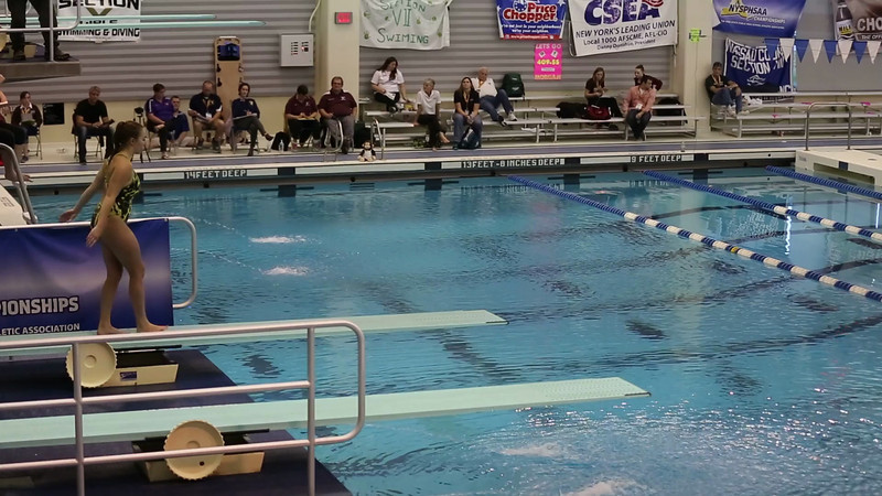 Meghann at NYSPHAA Diving Championdhip