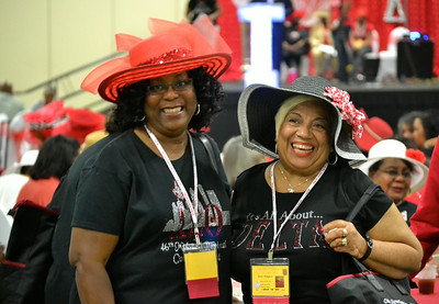 2014 Delta Sigma Theta Midwest Regional Conference - Thursday, June 19th