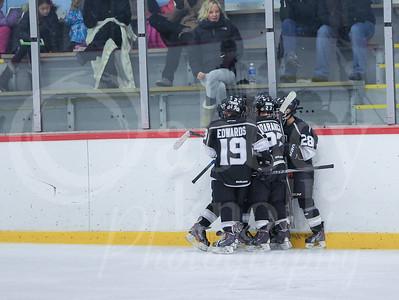 Advantage Hockey 2015
