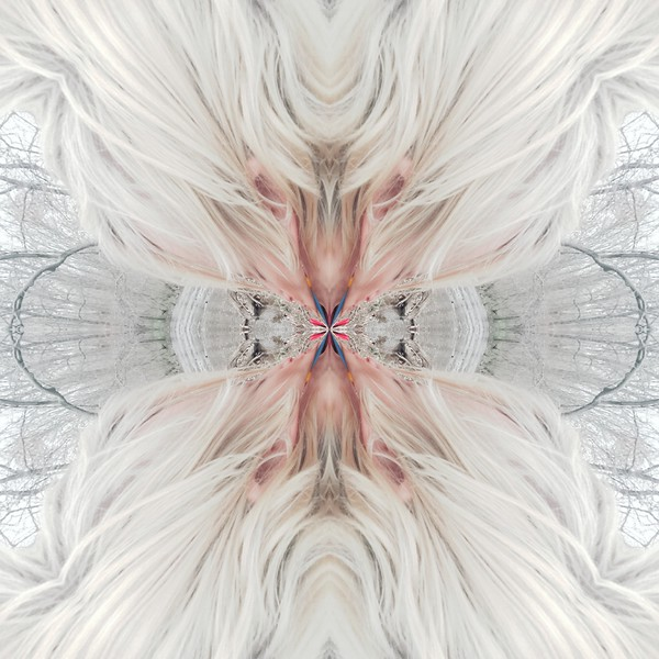 10285_mirror17.jpg