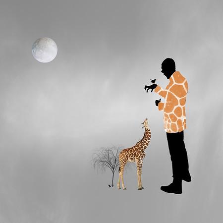 ENDANGERED Giraffe
