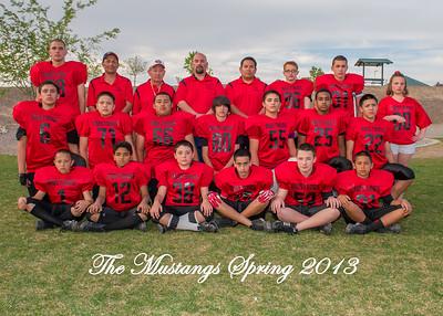 5. Mustangs