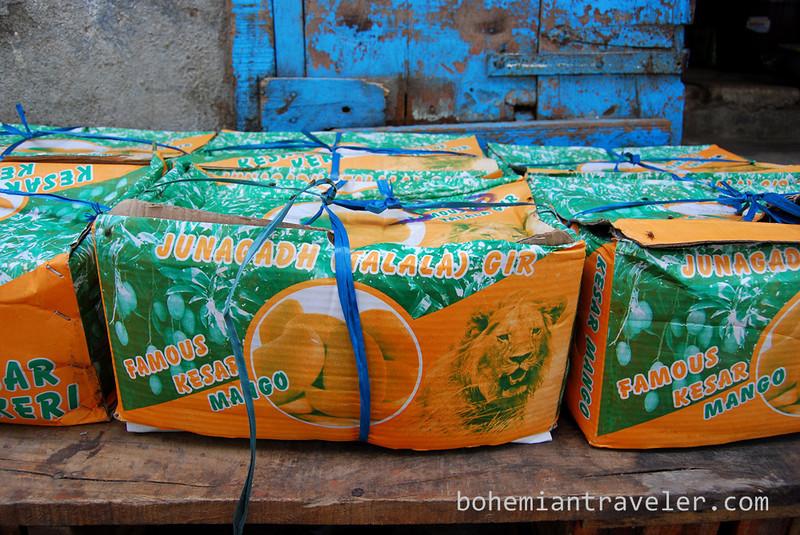 mango boxes.jpg