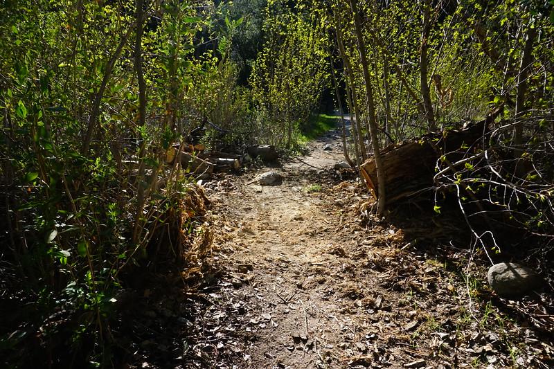 20160218114-Gabrielino Trail Scouting.JPG