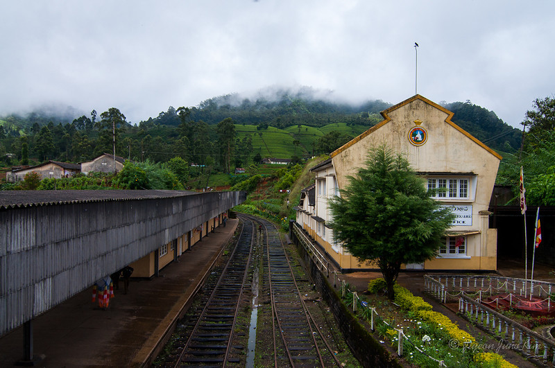 Sri-Lanka-Haputale-5915.jpg