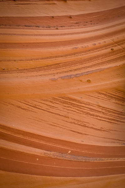 Zebra Canyon Detail #1