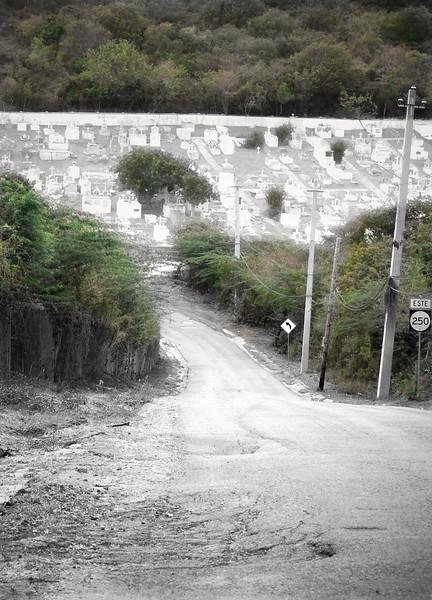 culebra011.jpg