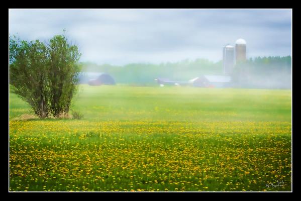 Farm Pix