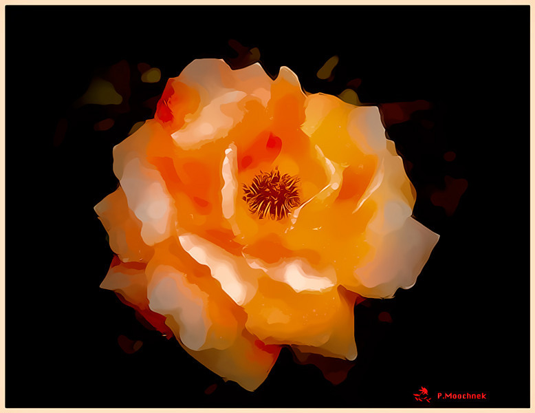 orange-glow11x14.jpg