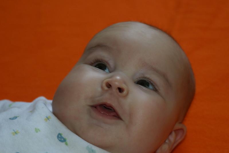 Babies-15.jpg
