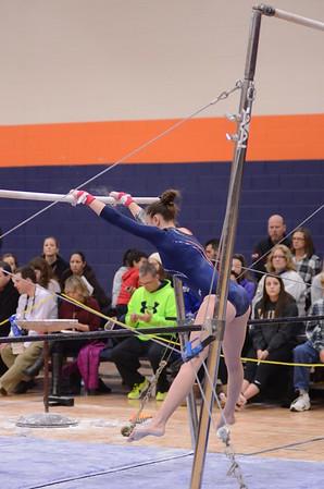 Oswego girls varsity gymnastics 2014