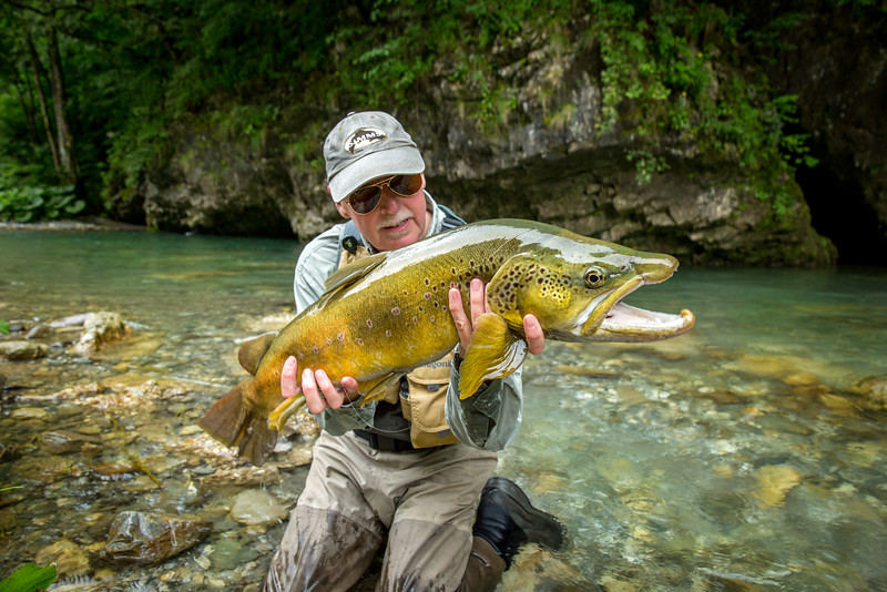 Big Slovenien brown trout