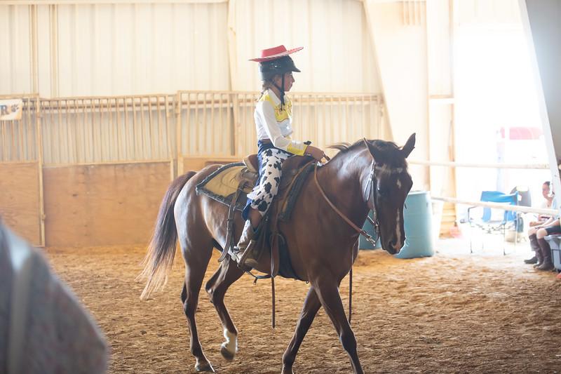 HorseCostume-53.jpg