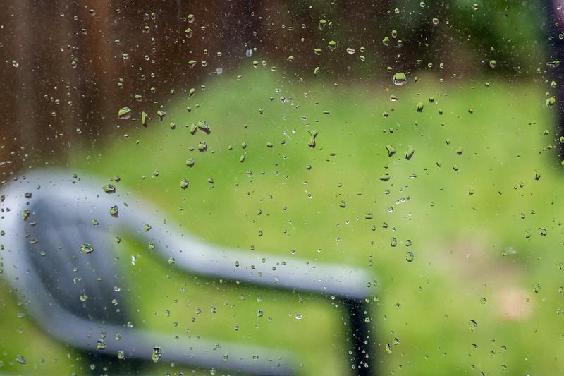 Rainy Day Photography 1