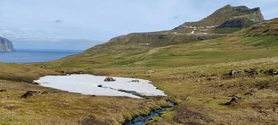 Hornvík júní 2021