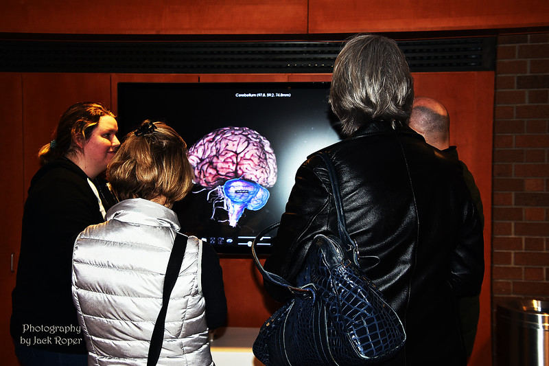 010   Brain image _3479.jpg