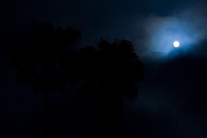 Moon Night_06-5.jpg