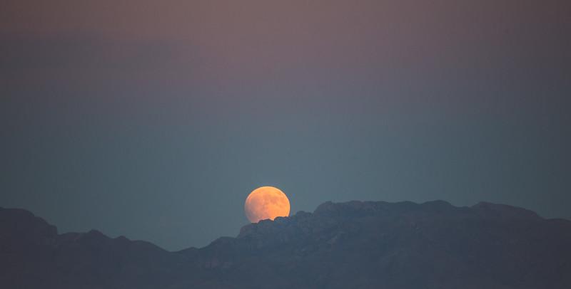 Super Moon-8903.jpg