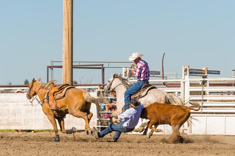 Blackfeet Rodeo July 2018-3.jpg