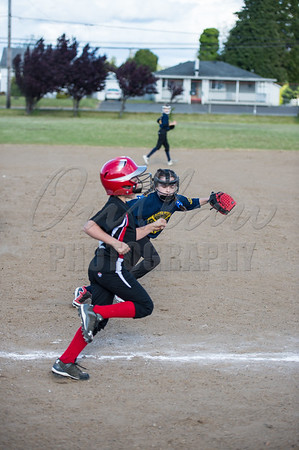 Bay Area Youth Softball