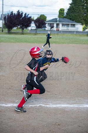 Bay Area Youth Softball