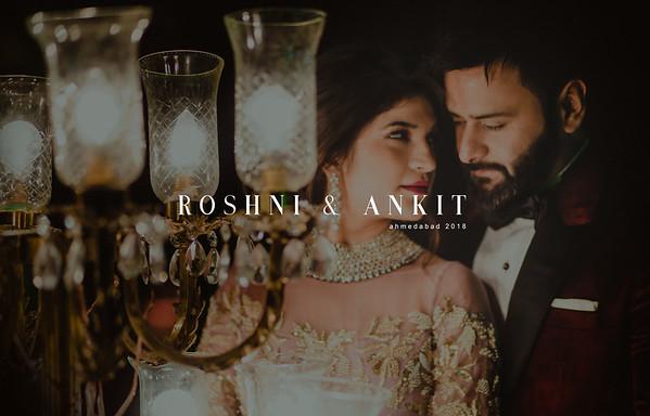Roshni and Ankit | Ahmedabad 2018
