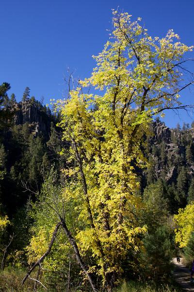 Silver City Trail