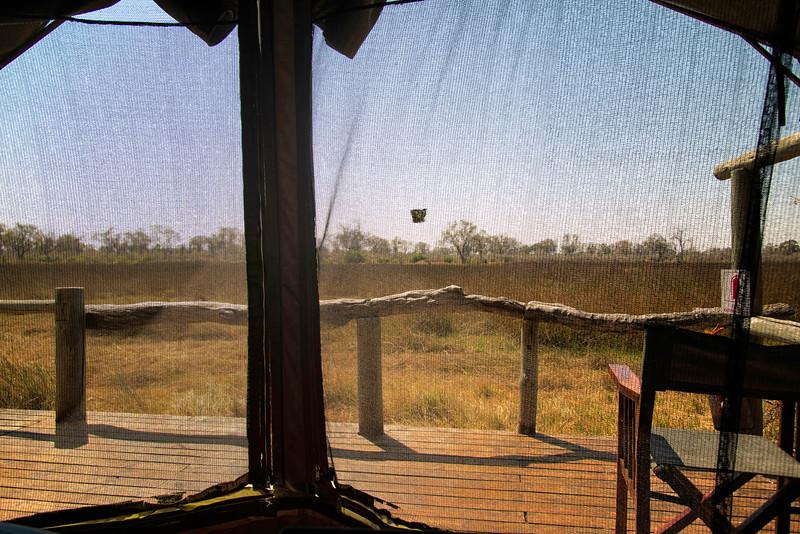 2014-08Aug-Okavango Masters-14-Edit.jpg