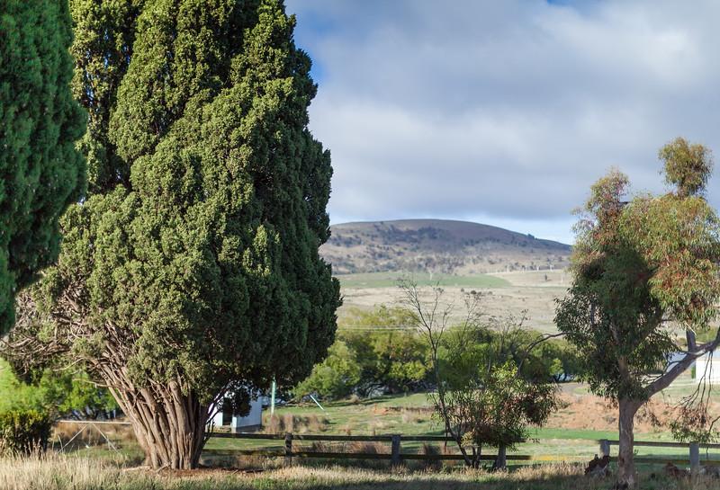 Tasmania_2015_323.jpg