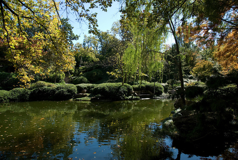 Pond in Botanical Garden, Fort Worth, Texas