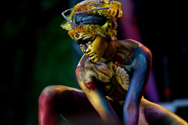 World Body Painting Festival 2013