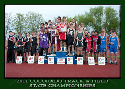 2011 State Track
