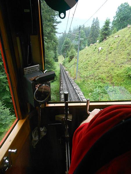 Cogwheel-from-Mt.-Pilatus---the-world's-steepest-cogwheel-railway3.jpg