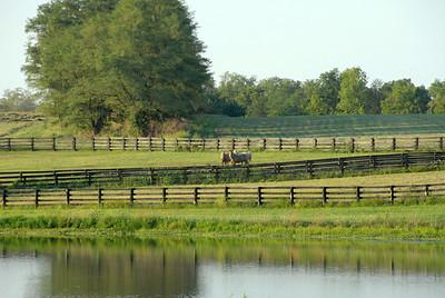 Farm/Location Shoots
