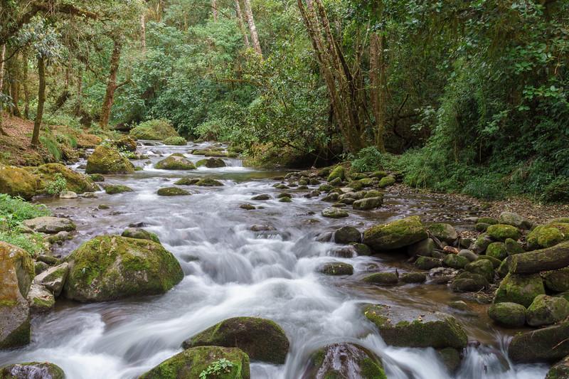 Costa Rica 2015-5250.jpg