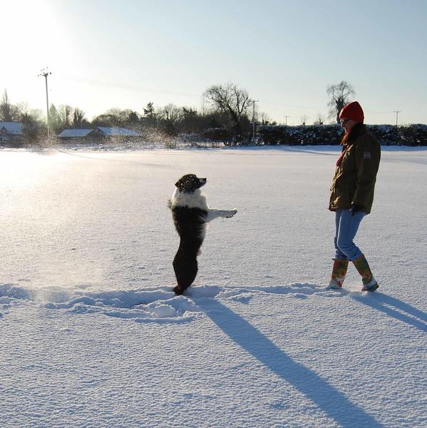 Winter walk Jan 2010 (88).JPG