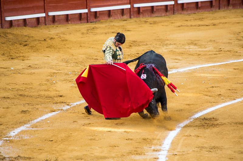 Bullfight7.jpg