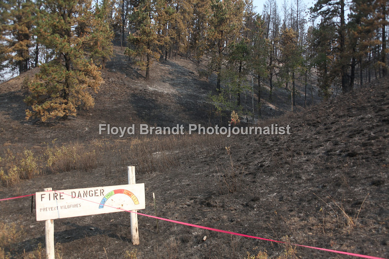 Havre Daily News/Floyd Brandt  Burnt and scorched earth from the Left Fork Fire Wednesday. The fire reached the Left Fork Road where it tried to jump the road.