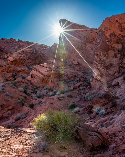 Valley of Fire SP, NV
