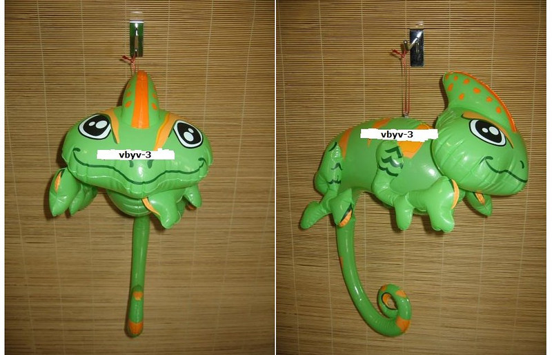 IF- ANIMAL- Rain- Lizard.jpg