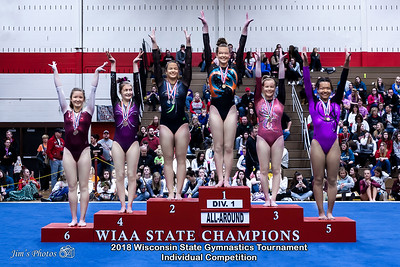 HS Sports - WI State Ind Gymnastics Tournament - March 03, 2018