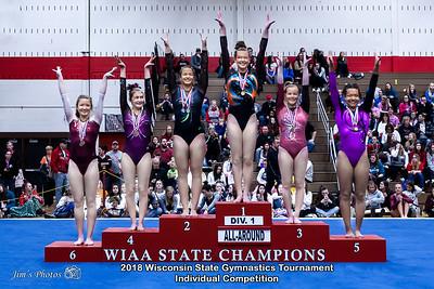 HS Sports - WI State Ind Gymnastics Tournament - March 03, 2018