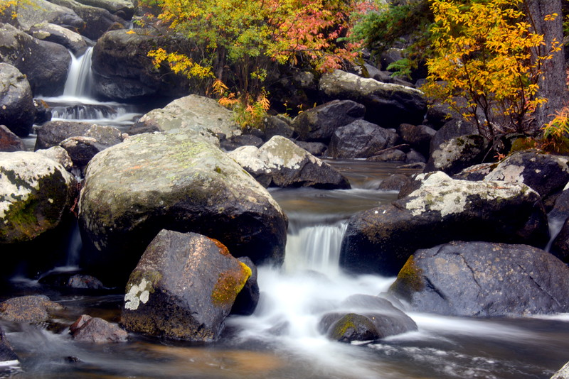 Dual-Waterfall-Stream-with-Fall-Leaves.JPG