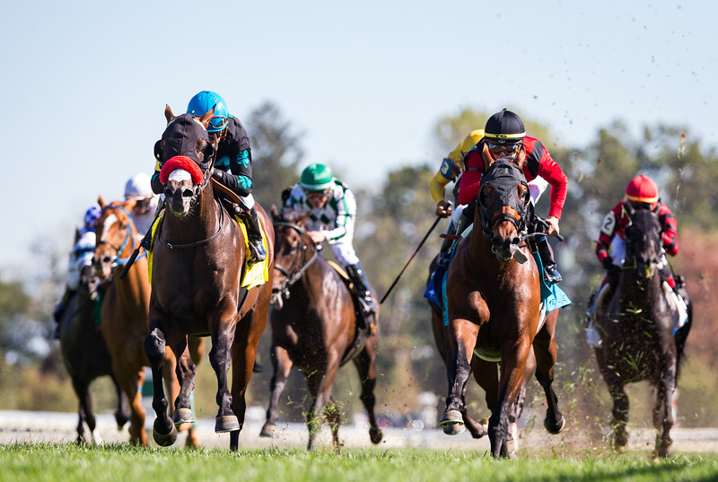 Stubbins (#4, Morning Line) wins the Woodford (G2) at Keeneland on 10.5.2019. Joel Rosario up, Doug O'Neill trainer, McShane Racing owner.