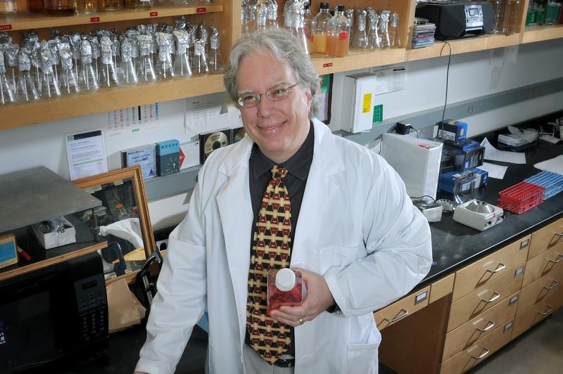 Terry_Connell_Mircobiology_Immunology_hr_3784.jpg
