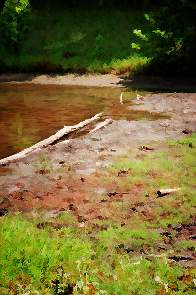 12 Lone Elk Park Aug 2009 - Waters Edge (buzsim default accentededges).jpg