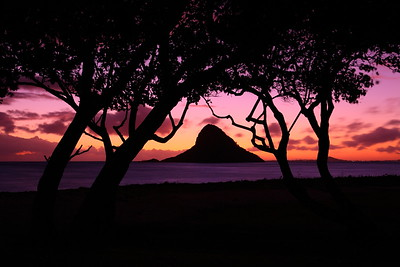 Mokoli'i Island, also called Chinaman's Hat at dawn. © 2019 Kenneth R. Sheide