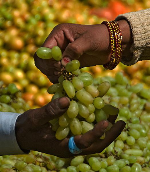 India2010-0211A-471B.jpg
