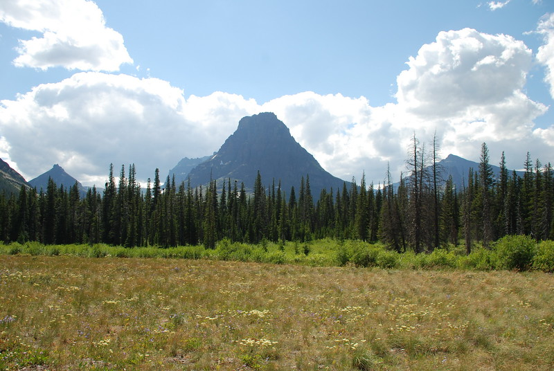 2008-07-24-YOCAMA-Montana_1202.jpg