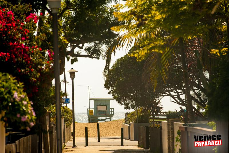 Venice Beach Fun-356.jpg